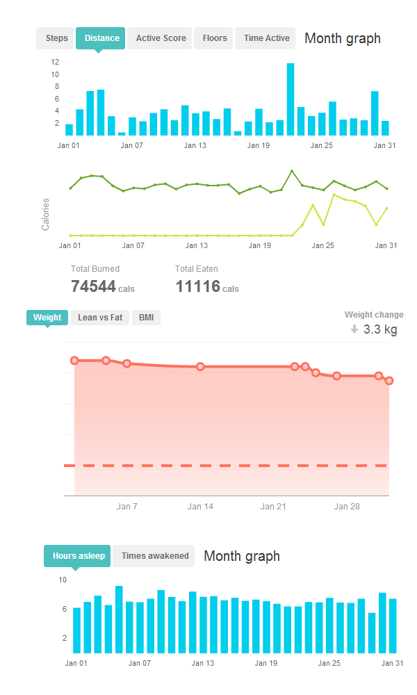 January 2013 FitBit Stats